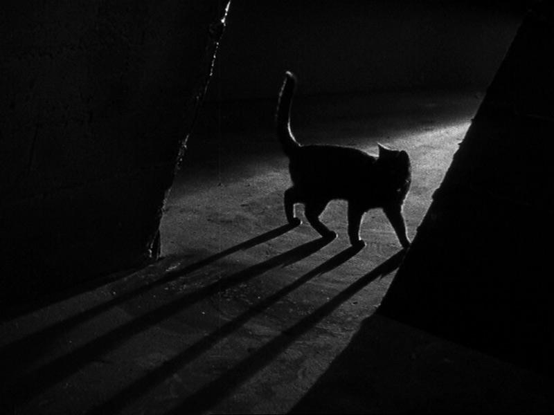 the-black-cat-1934-c