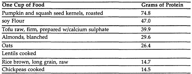 best-vegetarian-protein-sources