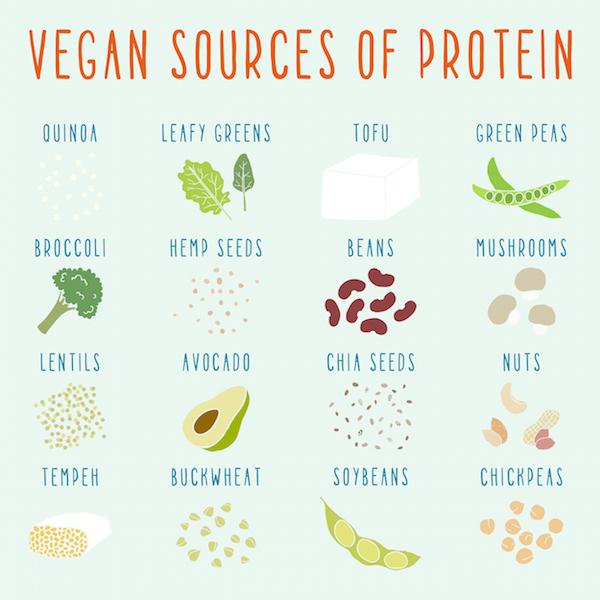 vegansources-ofprotein