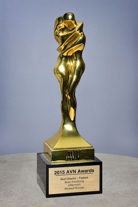 AVN_Award_Trophy_2015